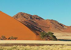 The Namib desert is considered one of the oldest deserts in the world, having endured arid or semi-arid conditions for at least 55 million years