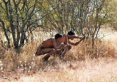 Bushmen hunting with bow and arrow