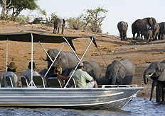 Wildlife safaris are very popular